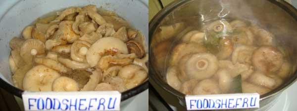 маринуем грибы